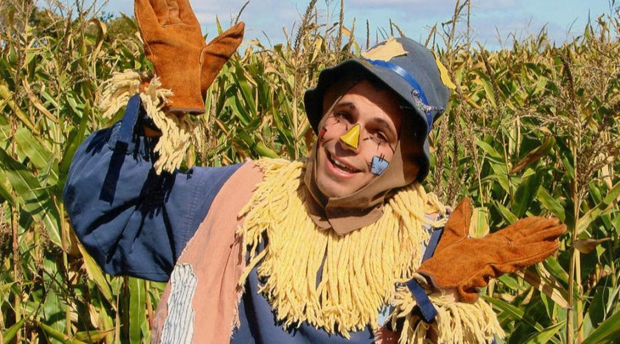 Picture of the Children's Theater Wizard of Oz scarecrow